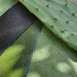 Innovative Vegan Cactus Leather | Watson & Wolfe